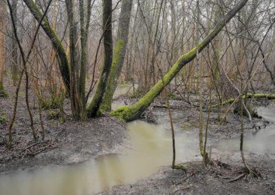 The Floods #20